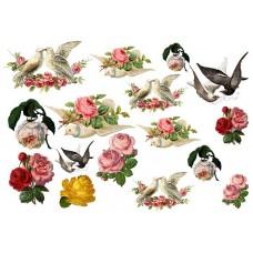 Vintage birds & flowers 1900102