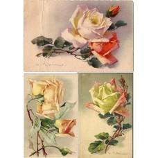 Vintage birds & flowers 1900105