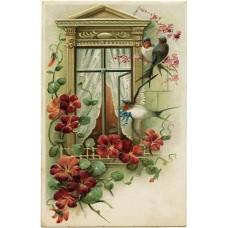 Vintage birds & flowers 1900108