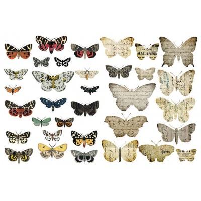 Πεταλούδες 2200101