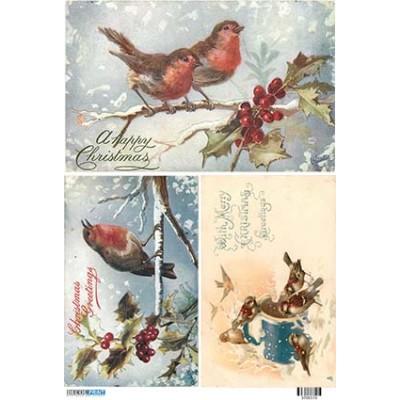 Χριστούγεννα  3700173