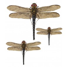 Dragonfly Set 3τεμ.(Stone Paper) ES-101
